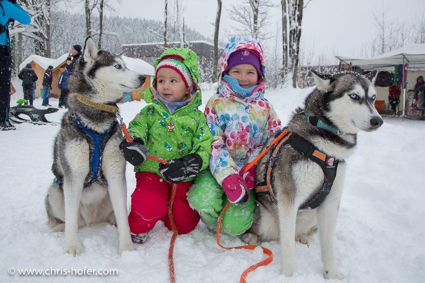 Hundeschlittenrennen Werfenweng 08.01.2017 Foto: Chris Hofer Bild zeigt: Nina mit Hund Luca und Leonie mit Hund Nala (Siberische Husky)